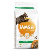 Iams Cat Adult Chicken 2kg